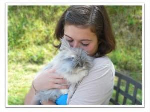 Comprendre son lapin nain - Porter plainte contre son voisin pour nuisance sonore ...