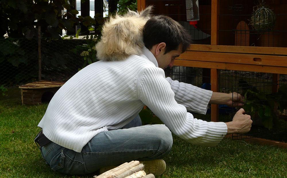 Ma lapine qui s'est perché sur l'épaule de mon conjoint