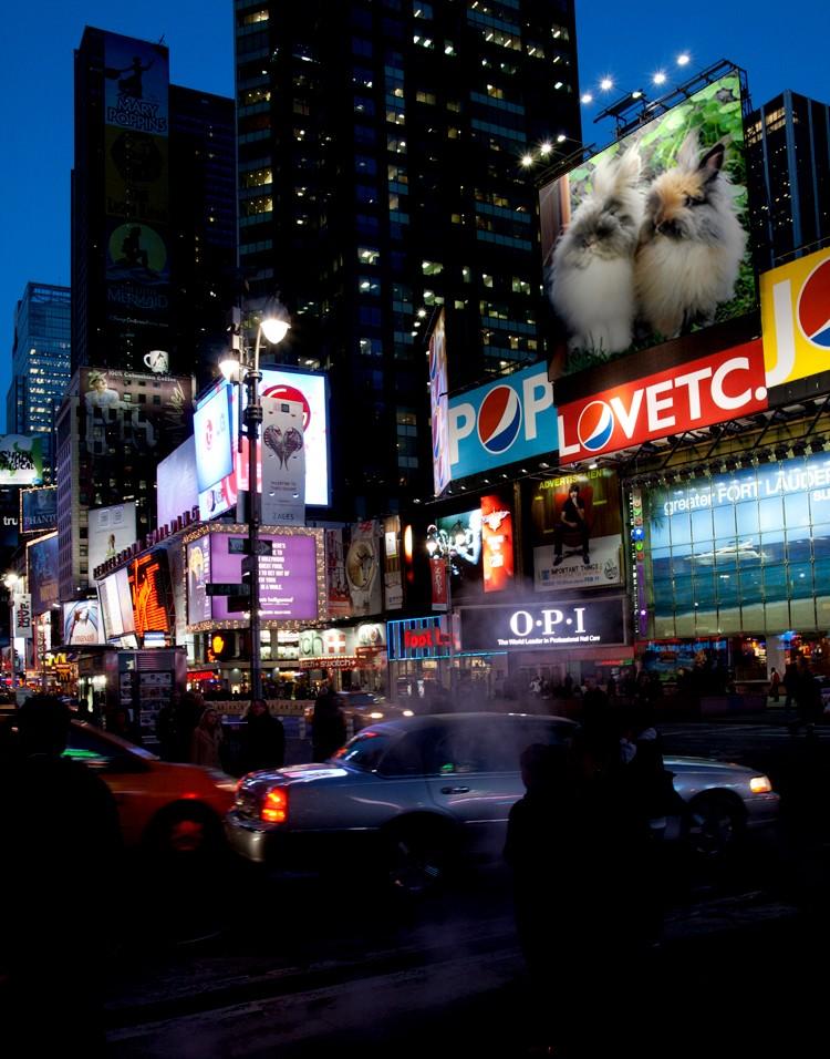 Pitchoune et Gribouille ont marqué New-York….